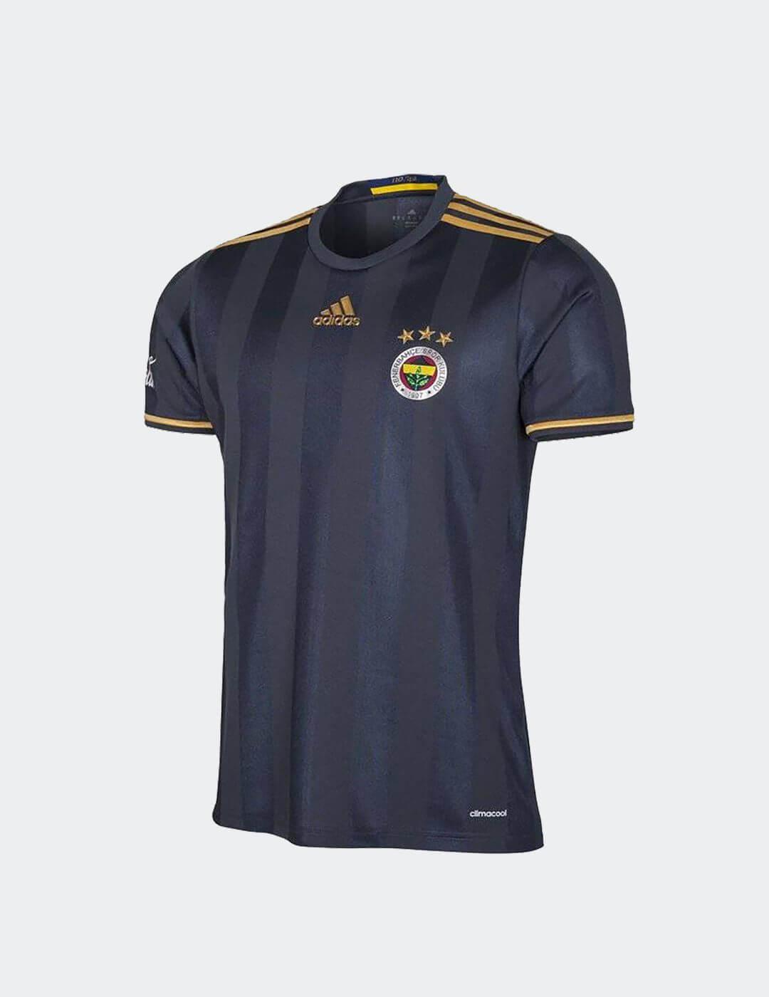 Çocuk Gri Fenerbahçe 110. Yıl Third Maç Forması